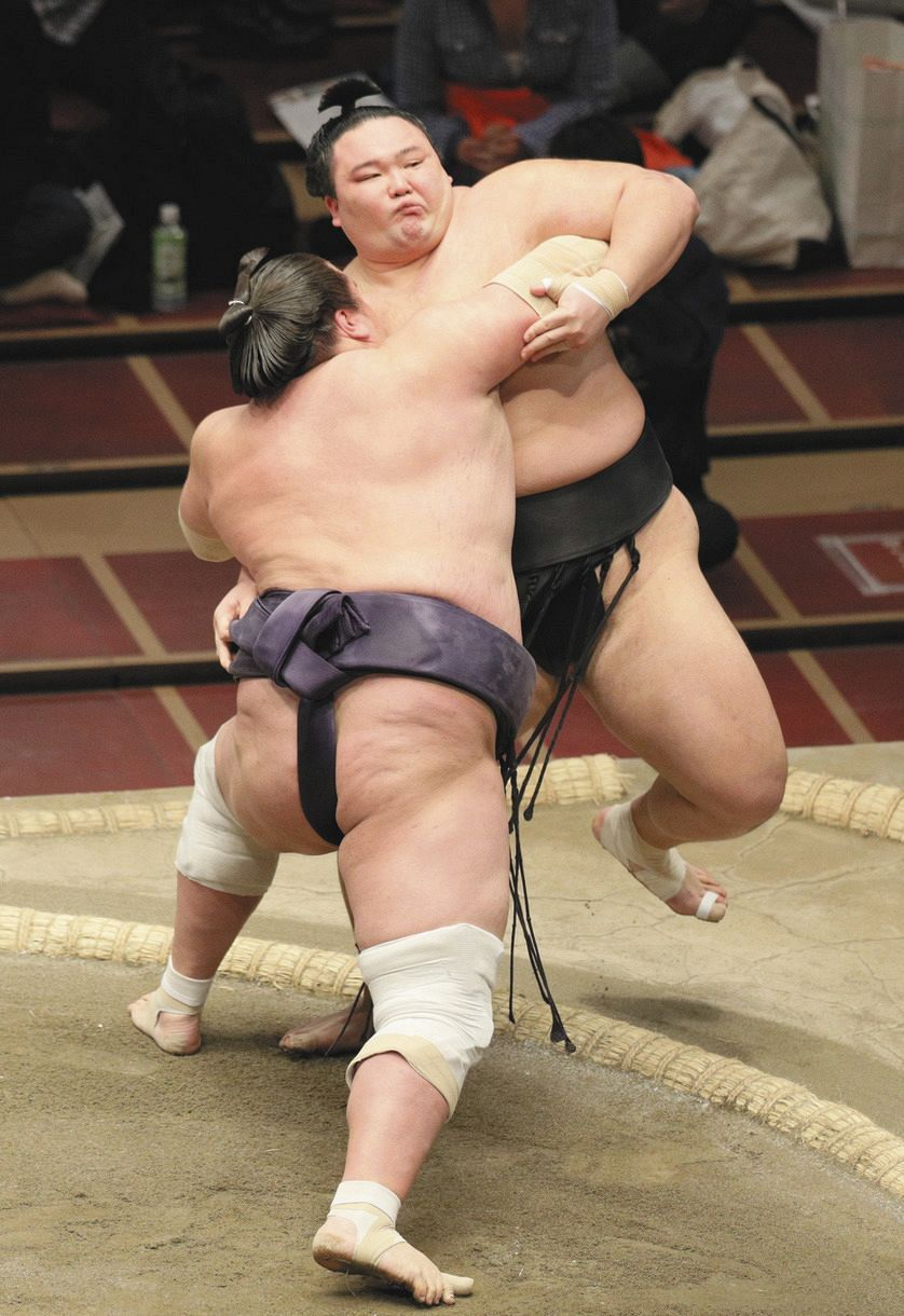 照 ノ 富士 結婚 照ノ富士が挙式、夫人と初デートは隅田川/一問一答