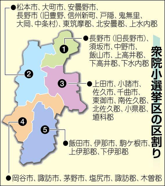 次期 衆議院 選挙