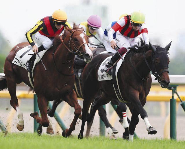 109・3倍ウインアグライア新馬戦制す!和田雄師もびっくり「調教で ...