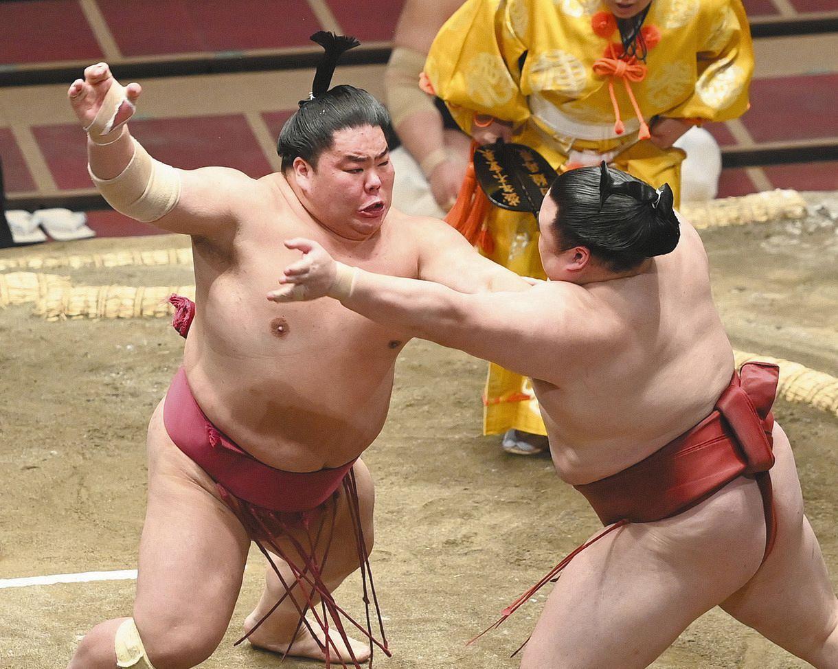 相撲 観戦 記 アマチュア