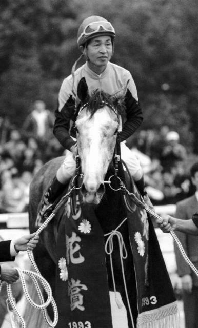 ビワハヤヒデ逝く 老衰のため30歳で…93年の年度代表馬も種牡馬としては ...