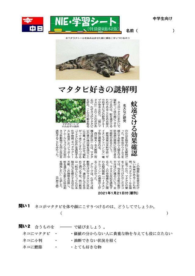 マタタビ好きの謎解明:中日新聞しずおかWeb