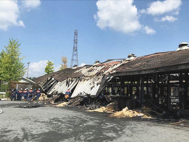 屋根が崩れ落ち西側は大部分が焼失…栗東トレセン火災でJRAが馬5頭死亡 ...