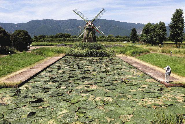 三川 公園 木曽