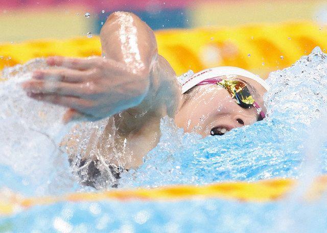 酒井、大本、砂間も五輪 競泳 日本選手権