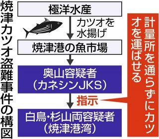 焼津港のカツオ盗難 計量の人手不足悪用か