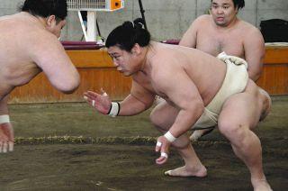 ニュース 大相撲