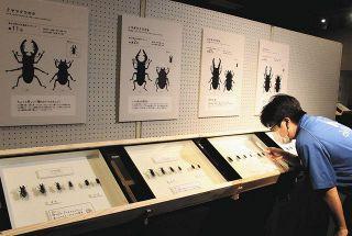 昆虫の生態や進化、楽しんで学べる 浜松科学館