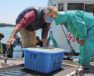 磐田の漁師・永谷さん、画家としても活躍 生命の力強さ描く
