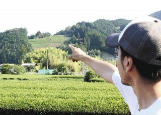 山頂に茶畑テラス新設 葵区の茶工場がCFで整備費募る