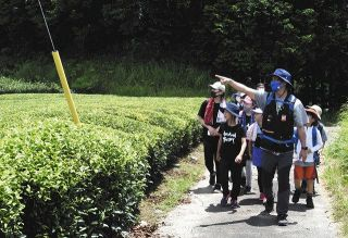 自然満喫 往復16キロの菊川・火剣山ウオーク