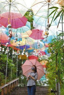 見上げれば梅雨空に傘 伊賀「モクモクファーム」人気スポット