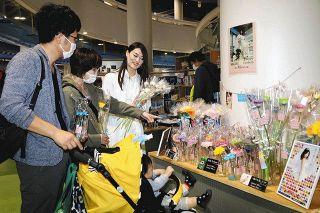 「いい夫婦」の日にガーベラの魅力発信 浜松科学館