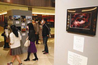県高校写真コンクール68作品展示 JR浜松駅ビル「メイワン」