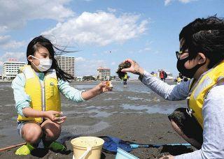 きれいな海を次世代へ NPO法人浜名湖フォーラムがごみ拾い